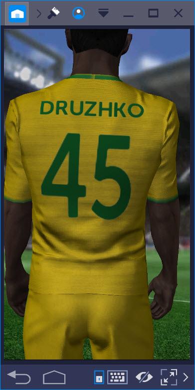 Фамилия игрока в Score! Hero
